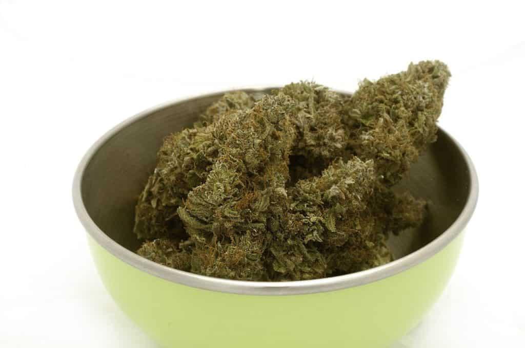 Thai food with cannabis introduced | Thailand News